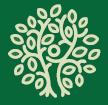 Baum Schoepfung